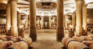 Los mejores Vinos de Rioja